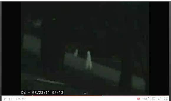 幽霊? 宇宙人? 真っ白い2足歩行の生物が撮影される