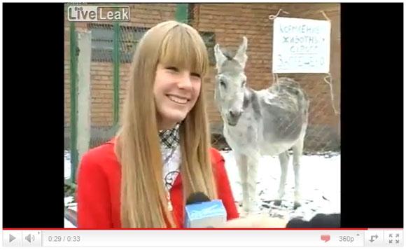 前髪パッツリのロシア系美少女インタビュー中にロバがオナラブー! ほほえみを与えた天使の屁