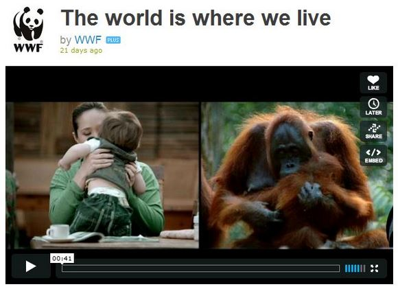 生き物は皆つながっている! メッセージがいっぱい詰まった世界自然保護基金のビデオが公開