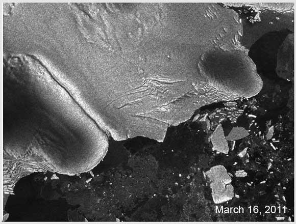 東日本大震災の津波は南極にまで及んでいた! 地震パワーで巨大な氷を割る