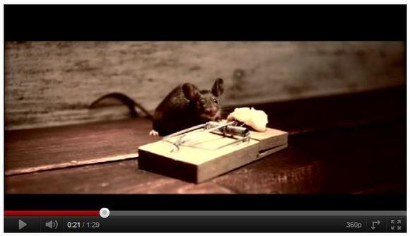 そんなバカな! 罠にかかったネズミに待っていた衝撃のエンディングとは