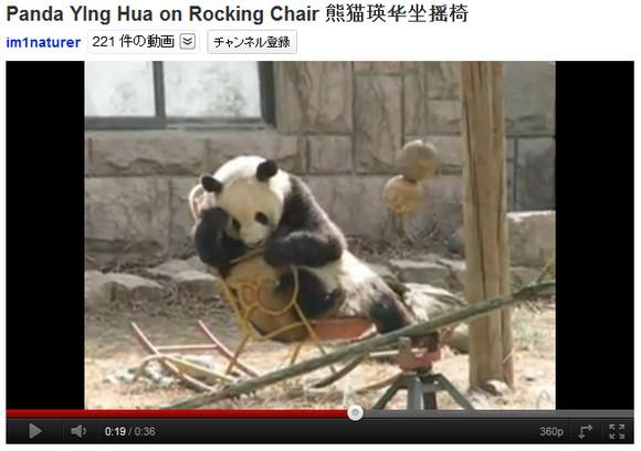「抜けないよー」ロッキングチェアから降りられなくなって苦悩するパンダが可愛すぎる