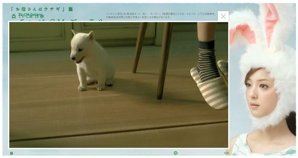 佐々木希さんがウサギになってる激カワのCMに衝撃の事実発覚 / 白ワンコの父親は超有名犬だった!