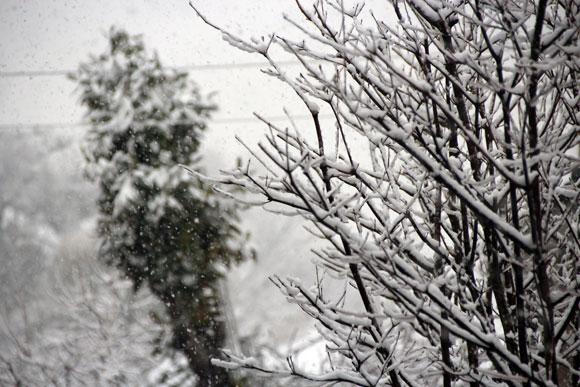 これは積もる / 東京で大雪!気象庁も注意を呼びかけ
