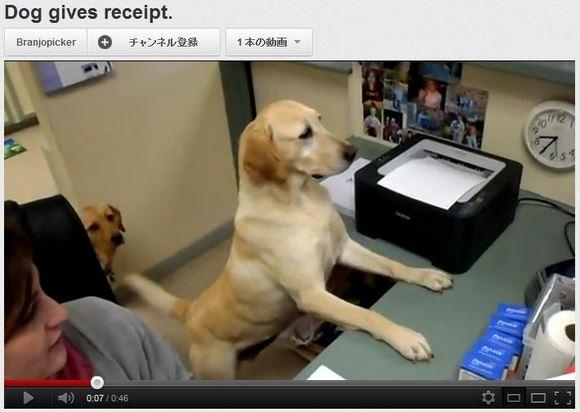 わんこサービスが充実しまっくている動物診療所