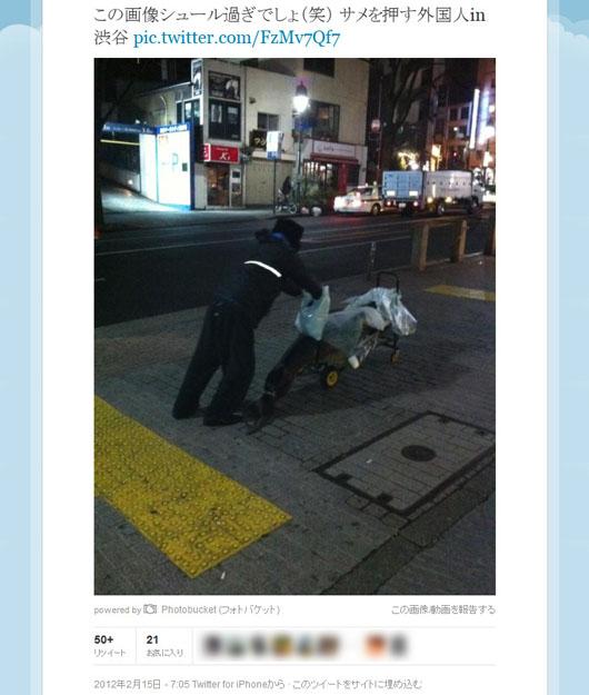まさか犯人? 渋谷でサメ搬送の一部始終が激写されていた!?