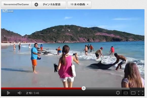【人間の温かさが伝わる動画】  市民によるイルカ30頭の救出劇が話題に