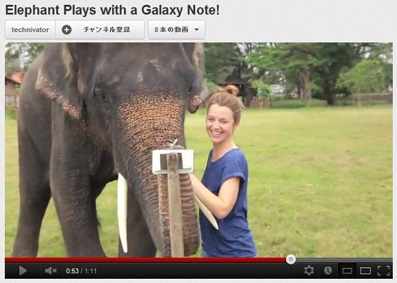 【動画】何度でも見たくなっちゃう! スマホで遊ぶゾウがとってもキュートなんだぞう