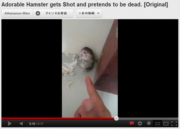 なんという役者! 鉄砲を撃つマネすると死んだふりするハムスターが話題に