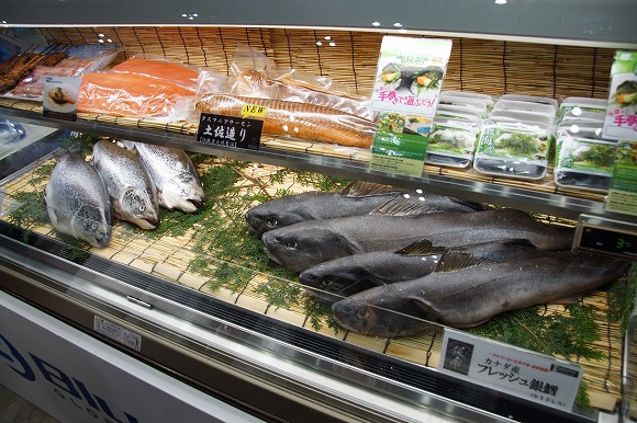 オーストラリア・タスマニア産のサーモンがスゴい! これぞ「日本人向けサーモンナンバーワン」かも