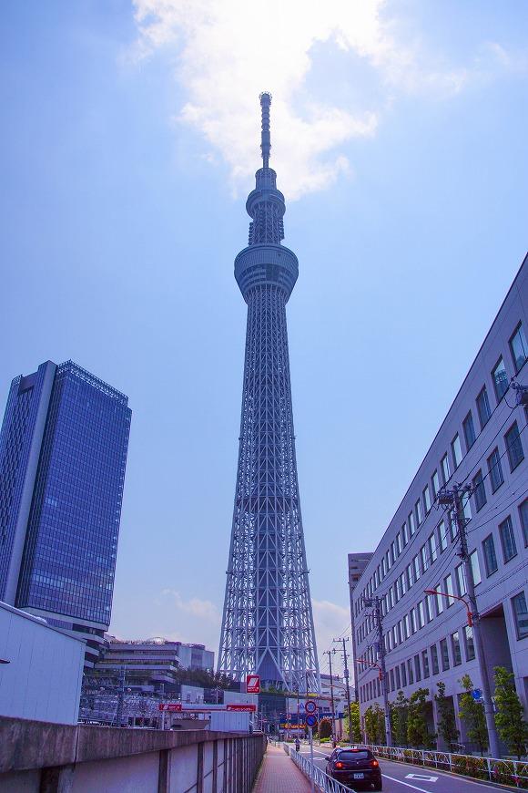 夏休み前に知っておきたい『東京スカイツリー鉄板おみやげ』まとめ