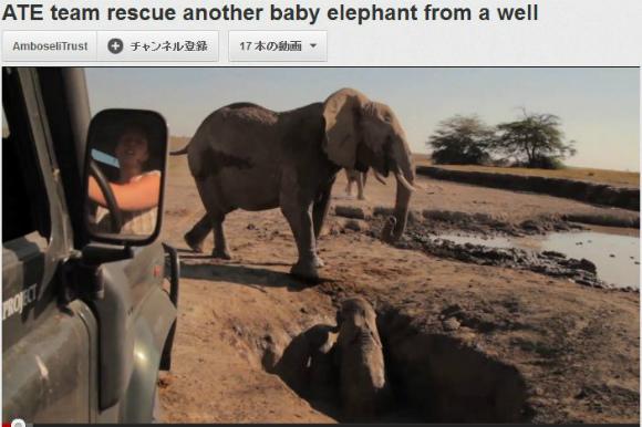 愛っていいなあ! 生後8カ月の子ゾウを救出する動画が世界で感動を呼ぶ!!