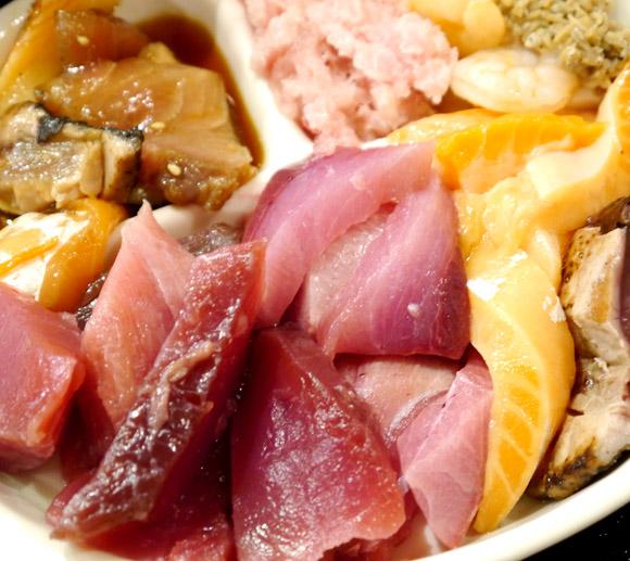 制限時間60分で刺身食べ放題! しかもお値段たったの1000円で超お得 / おさかな本舗 たいこ茶屋