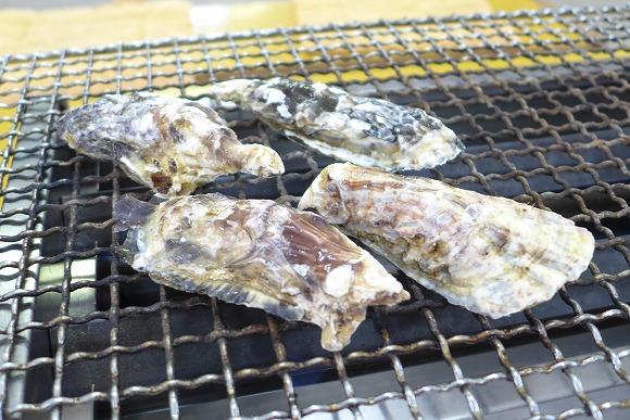 【福岡県・糸島】プリプリのカキや激レア国産ハマグリが山盛り1000円前後『牡蠣小屋』が安ウマすぎてヤバい! 福岡県民マジでうらやましいわ