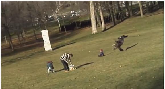 【マジかよ動画】 公園で遊んでいる赤ちゃんがワシにさらわれる瞬間が激写される!? 信じられない動画が世界に拡散中