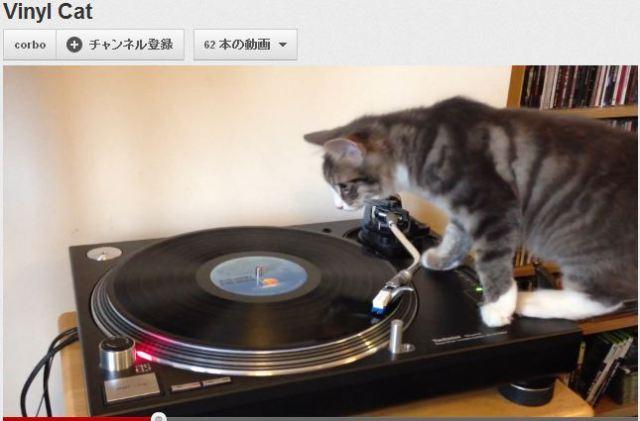 体全身で音楽を楽しんでやがる! ボブ・マーリーの音楽でレコード・スクラッチをエンジョイしまくるDJニャンコ