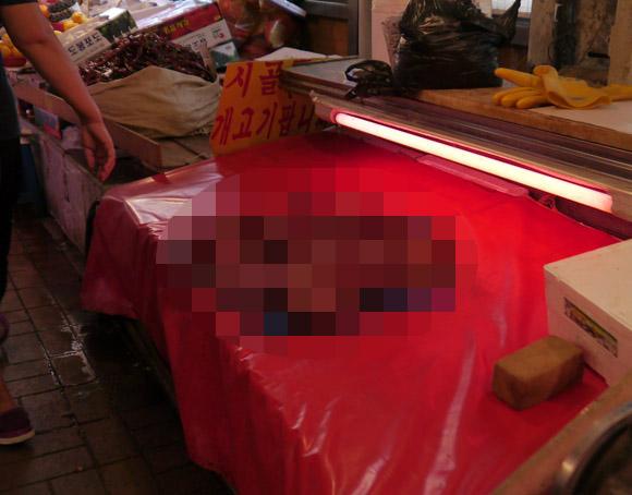【韓国旅日記】閲覧注意です! 犬肉は赤いビニールのうえで売られている