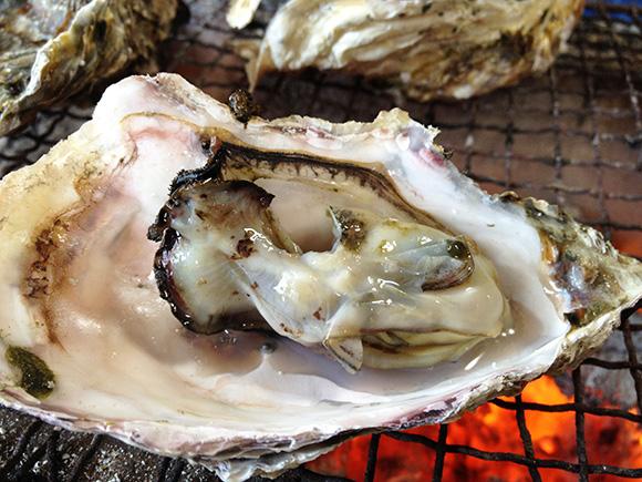 【隠れ名産地】広島だけじゃない! 日本海で育った牡蠣はキュッとしまった身に旨味がたくさんつまってる / 石川県能登半島