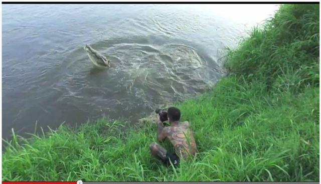 【心臓バクバク映像】ワニに食われそうになるカメラマン