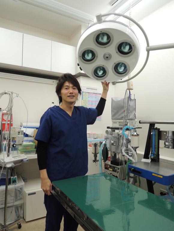 【質問16個】ミスチル桜井和寿に激似のイケメン獣医に色々質問をしてみた!「似ている芸能人は誰ですか?」