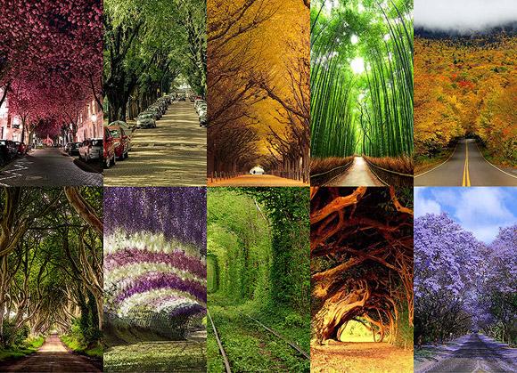【ナターシャ通信】世界の美しいトンネルトップ10です!