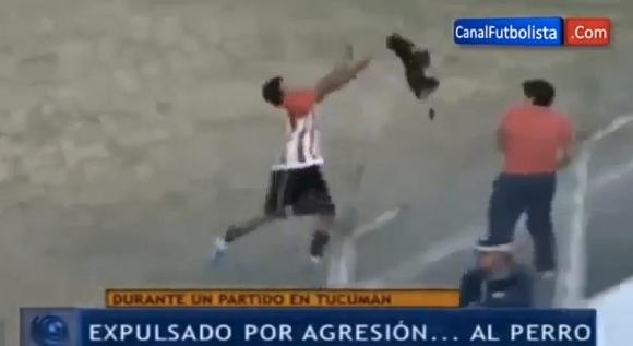 【衝撃サッカー動画】フィールドに迷い込んだ犬を放り投げた選手がレッドカードで一発退場 → 解雇