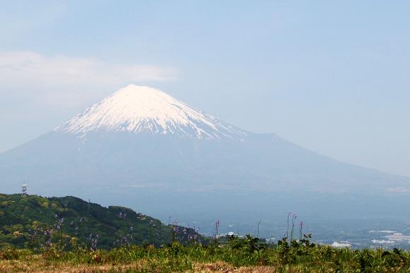 """「日本は落ちぶれていない! 日本にはこんなにたくさん """"世界一"""" がある」と海外専門家が指摘して話題"""