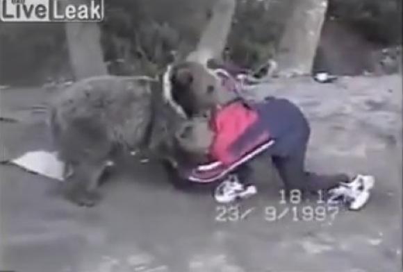 【衝撃格闘動画】クマはレスリングもできる