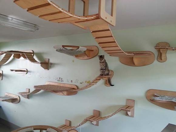 ネコ派に朗報! ドイツメーカー「Goldtatze」のアイテムで部屋を完全ネコ仕様に改造できる!!
