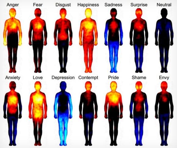 【研究結果】感情は体の中をこう変える / 感情と体の相関関係を示した図が話題