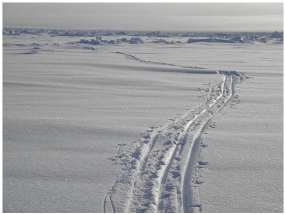 【北極冒険16日目】ブリザードに遭遇 / 強風で1歩も進めないまま南へ2kmも押し戻される