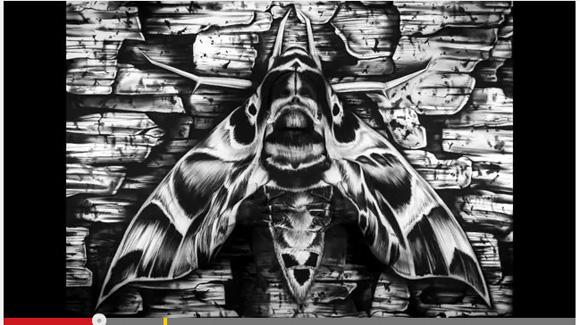 【鳥肌動画】白黒で描かれた「蛾」のなかに隠された女性を見つけられるか? 女性が動き出す瞬間がキモすぎてヤバイ