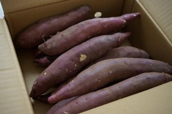 【究極の焼き芋】おいも王国茨城のサツマイモ『紅天使』が激ウマすぎる件 /  スイートポテトかと思ったら焼き芋だった