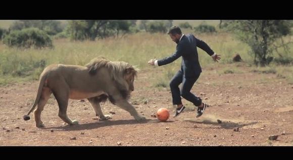 【衝撃サッカー動画】CGなしのガチンコ! 本物のライオンとサッカーをするジェントルマンがスゴい!!