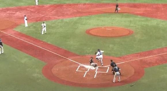 【衝撃野球動画】これこそ韋駄天! 相手守備のもたつく間にランニングホームランした選手が速すぎる!!