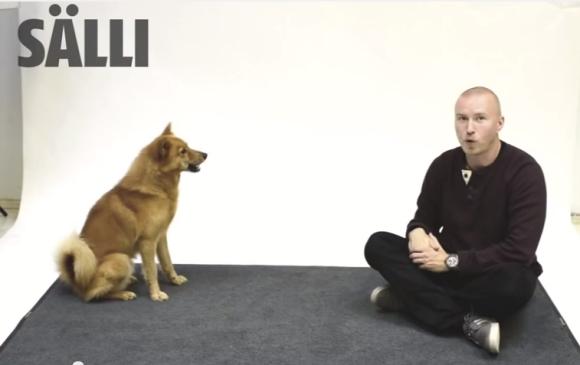 【笑劇動物動画】天才的な再現力! 犬の声を完璧に真似する声優が犬に向かって吠えるとこうなった
