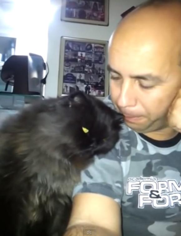 どう見ても恋人! 『イチャイチャしようよ』と人間に甘えるネコが話題 / ネットの声「可愛過ぎて悶絶死した」「ネコが最高のペットである理由」
