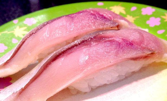【富山グルメ】氷見でウマイ寿司を安く食べたいなら迷わず回転寿司に行け! 道の駅『ひみ番屋街』の回転寿司はシメサバさえも新鮮ぴっかぴか!!