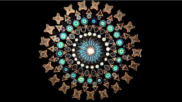 """知られざるミクロの芸術! 顕微鏡で見た """"藻"""" がアンティークのステンドグラスみたいで美しい"""