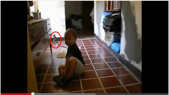【鮮明オカルト映像】アルゼンチンで子どもの様子を撮影した映像に謎の生物! 走り抜ける小人か!?