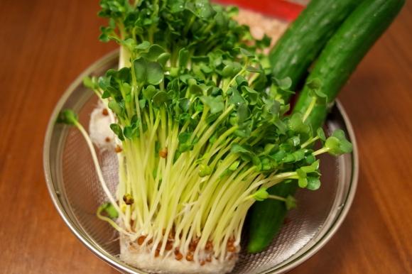 【激安・激ウマ・超簡単レシピ】9月18日は「かいわれ大根の日」なり! 3分で出来る『和風かいわれ大根サラダ』を作ってみて!