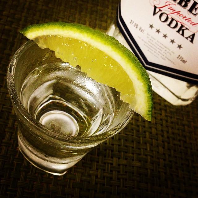 【命の水】スゴいぞお酒! 猛毒を口にして瀕死に陥ったニャンコにウォッカを点滴 → ベロベロになって生還