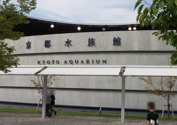 """「京漬物ドッグ」に「オオサンショウウオ清流ソーダ」……京都水族館内にあるカフェが """"京都らしさ"""" を追求しまくっている件"""