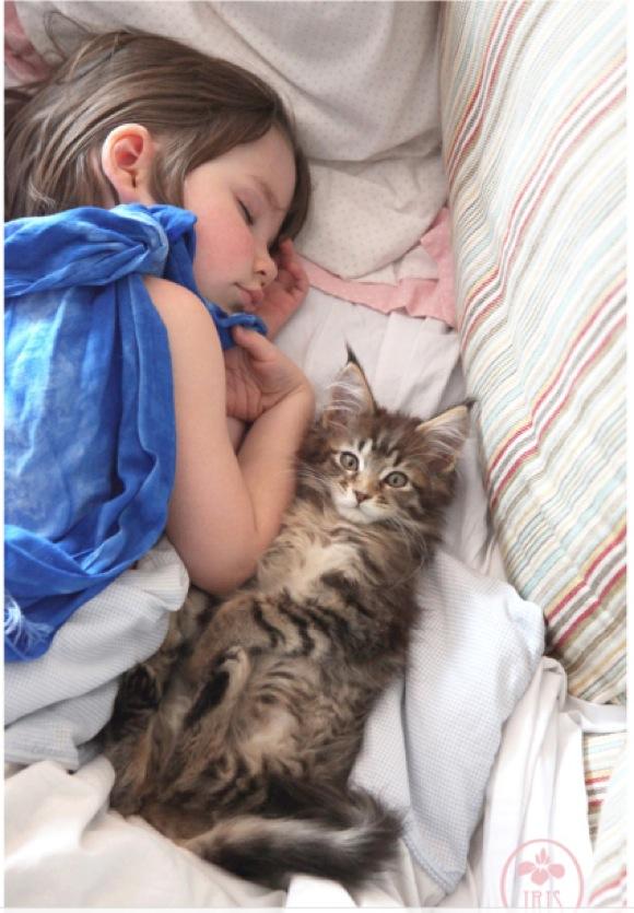 【最強の2人】自閉症の少女と1匹のネコの心温まる友情 / 言葉はなくても一緒にいるだけで幸せなのだ!