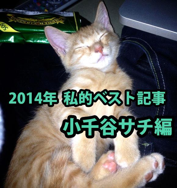 【私的ベスト】2014年に公開したもので記者がもっとも気に入っている記事5選 〜小千谷サチ編〜