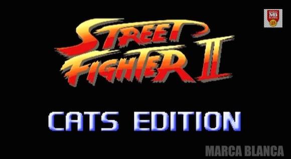 【衝撃動画】海外で『ストリートファイター2』の実写版バトルが発生! 対戦相手はまさかの猫!!