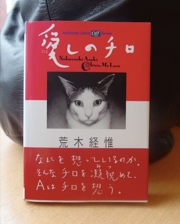 """本日3月2日は写真家アラーキーの愛猫 """"チロ"""" の命日 「始めはネコが好きじゃなかった」「一番気持ちが入って撮ったのはチロ」"""