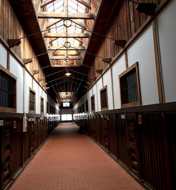 【網走】天窓の光は受刑者に希望を与えたのか? 監獄博物館の有形文化財「五翼放射状平屋舎房」が美しい