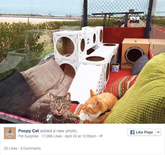【ネコチャリ】特製チャリでネコと一緒に自転車旅行! その距離490キロなり!!
