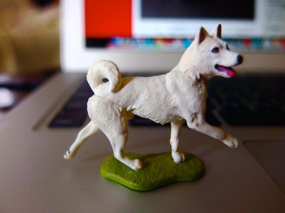 イヌのウンチにココまでする?米国で「路上に残されたイヌの糞のDNAを採取 → 飼い主を突き止めたる!」との動きが加速中